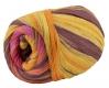 Woolly Hugs Bandy Farbe 05